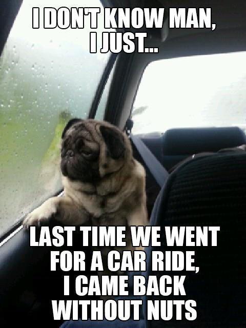 The car ride
